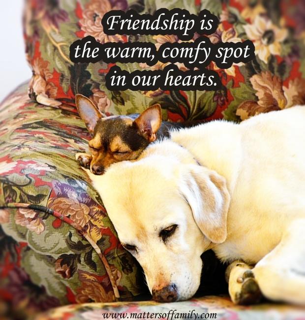 Friendship-MattersofFamily